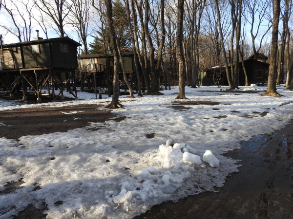 今週末の天気と気温(2020年1月9日)雪解け進む、場内一部ツルツル・どろどろです_b0174425_19224209.jpg