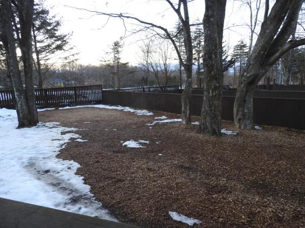 今週末の天気と気温(2020年1月9日)雪解け進む、場内一部ツルツル・どろどろです_b0174425_19252054.jpg
