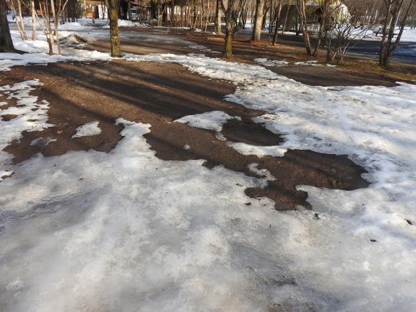 今週末の天気と気温(2020年1月9日)雪解け進む、場内一部ツルツル・どろどろです_b0174425_21073364.jpg