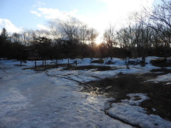 今週末の天気と気温(2020年1月9日)雪解け進む、場内一部ツルツル・どろどろです_b0174425_21081031.jpg