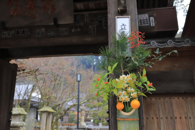 【修善寺】西伊豆旅行 - 2 -_f0348831_08054355.jpg