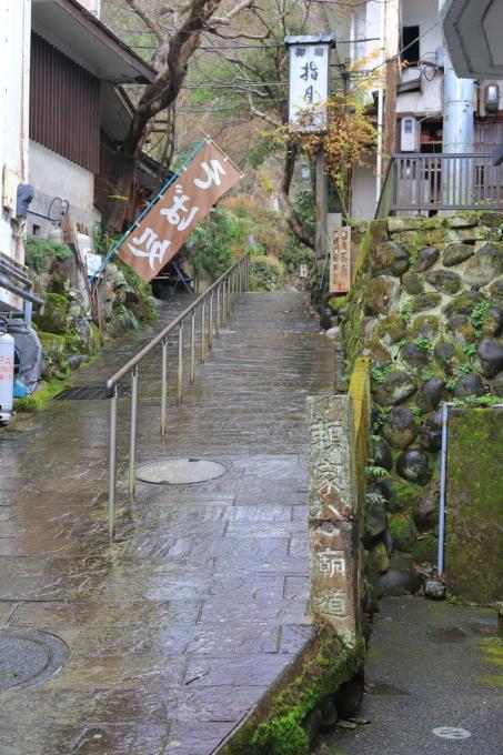 【修善寺】西伊豆旅行 - 2 -_f0348831_08061466.jpg