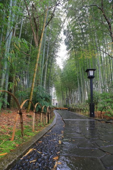 【修善寺】西伊豆旅行 - 2 -_f0348831_08062051.jpg
