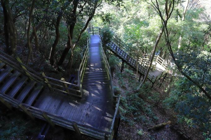 【河津七滝 part 1】西伊豆旅行 - 7 -_f0348831_08084258.jpg