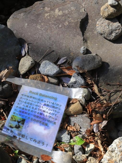 【河津七滝 part 1】西伊豆旅行 - 7 -_f0348831_08085710.jpg
