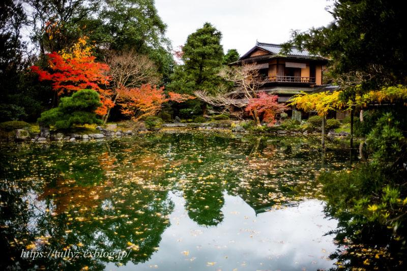 京都の秋2019(30)_d0108132_14530637.jpg