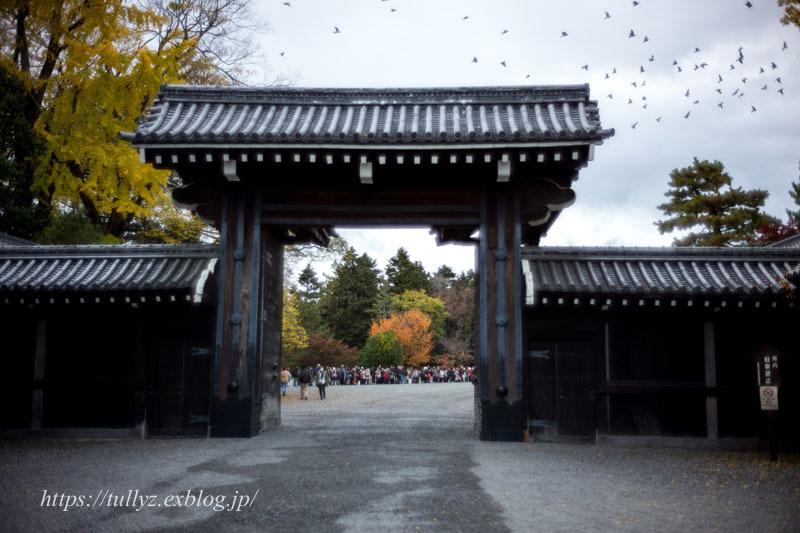 京都の秋2019(36)_d0108132_15073785.jpg