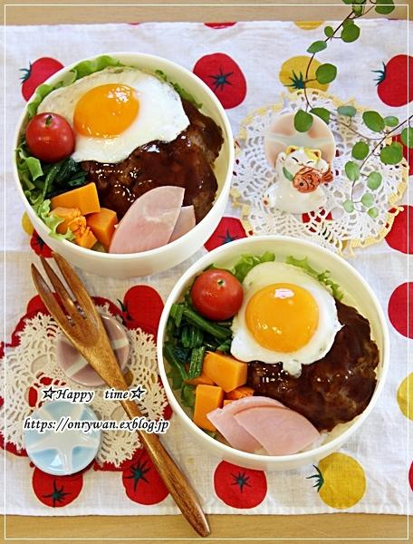 ロコモコ丼弁当と山さん♪_f0348032_16522122.jpg