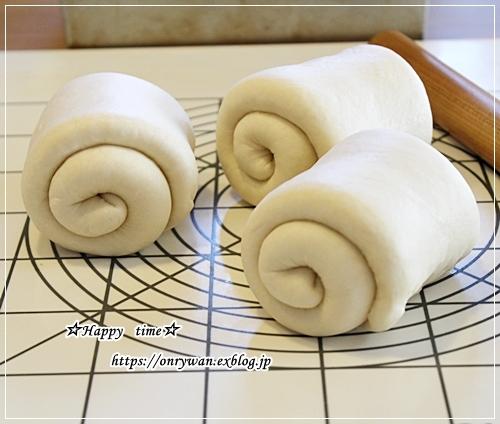ロコモコ丼弁当と山さん♪_f0348032_16522750.jpg