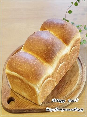 ロコモコ丼弁当と山さん♪_f0348032_16523451.jpg