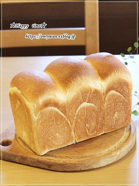 ロコモコ丼弁当と山さん♪_f0348032_16524072.jpg