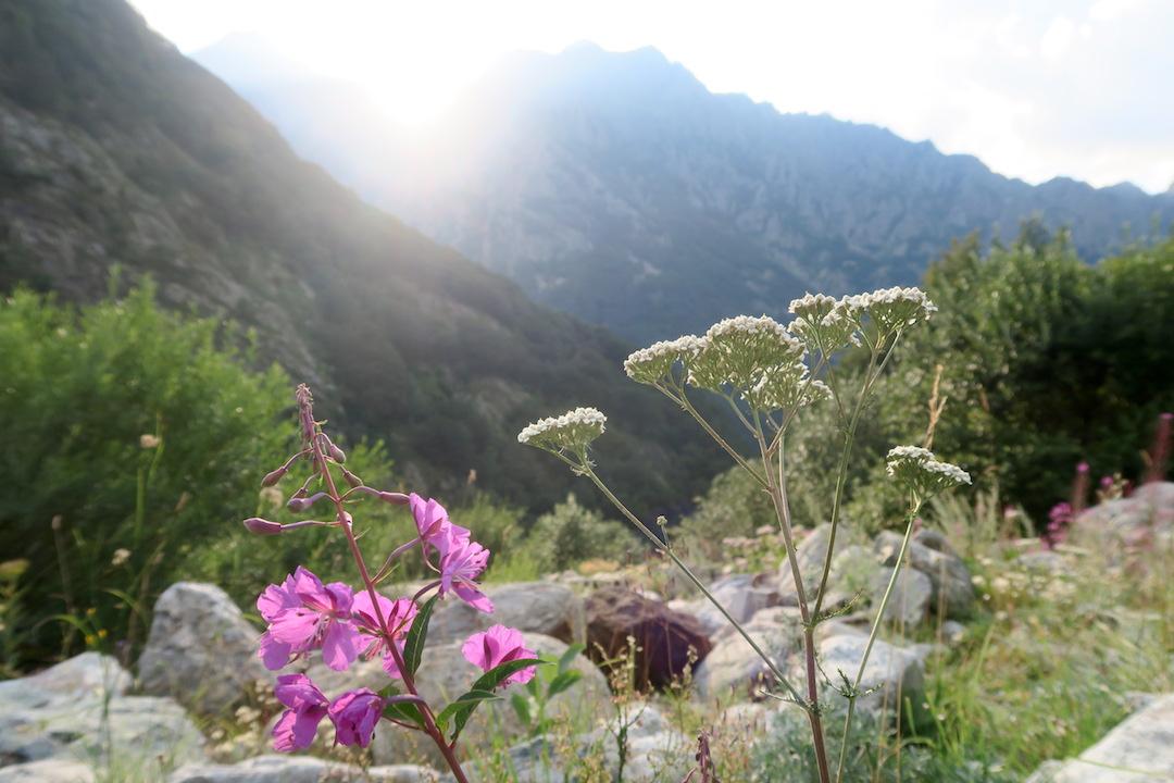 アルプスの山が呼んでる、実写映画『ハイジ』とマリッティメ・アルプス_f0234936_854742.jpg