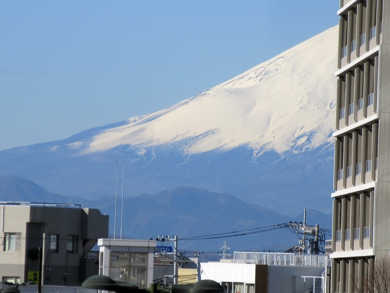 【今日のハーフ富士山とサミットストアでお買い物】唐辛子系_b0009849_16222129.jpg