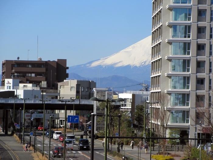 【今日のハーフ富士山とサミットストアでお買い物】唐辛子系_b0009849_16223480.jpg