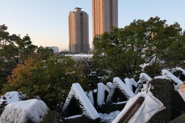 都会の雪、、猫は袋が好き。_d0193569_07053826.jpg