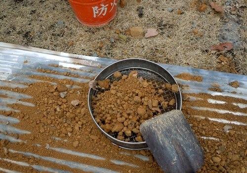 炭焼き準備を終える_b0102572_22063460.jpg