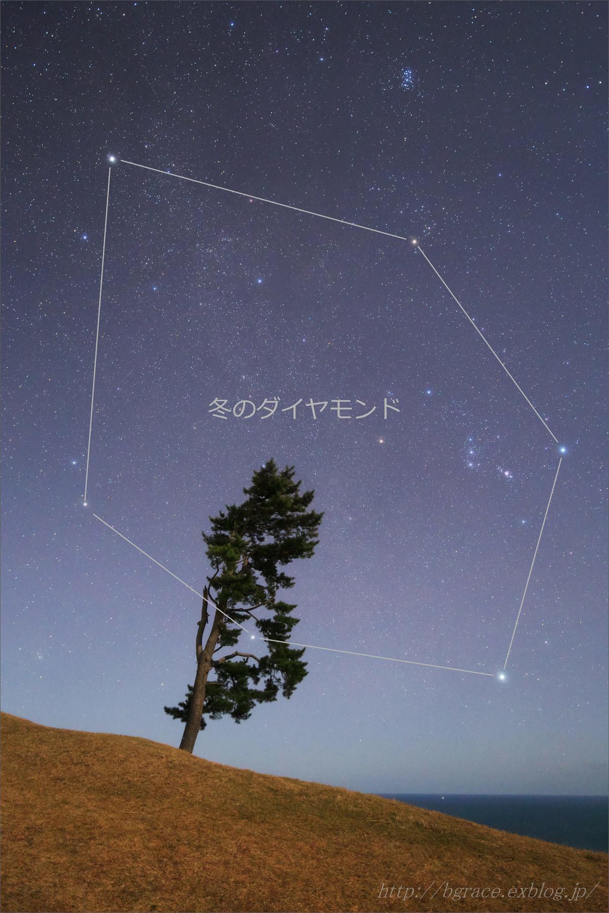 月夜に輝く 冬のダイヤモンド_b0191074_21040189.jpg
