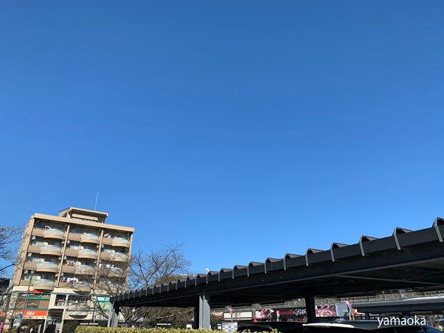 空の青さの所為!?_f0071480_17262676.jpg