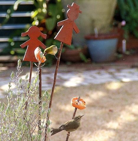 ◆小さな庭のお客さま_e0154682_00025667.jpg