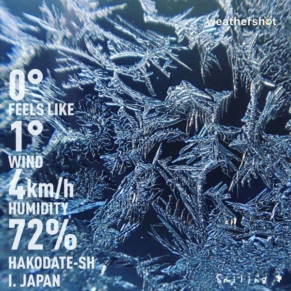 窓に着いた結晶(窓霜)が綺麗でした♪_f0340004_11144753.jpeg