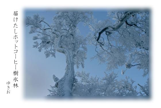 雪景色 その⑤_b0392813_19371086.jpg