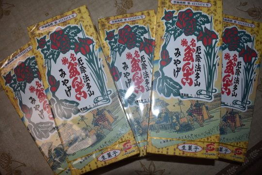 法多山詣で_e0165922_14501036.jpg