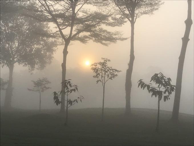 深い霧の中でスタート_b0100062_10484662.jpeg