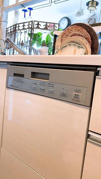 ビルトイン食洗機の水漏れ_e0237680_10020317.jpg