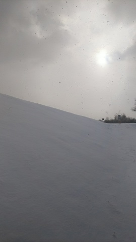 雪…降らないなァ~_b0343293_22004980.jpg