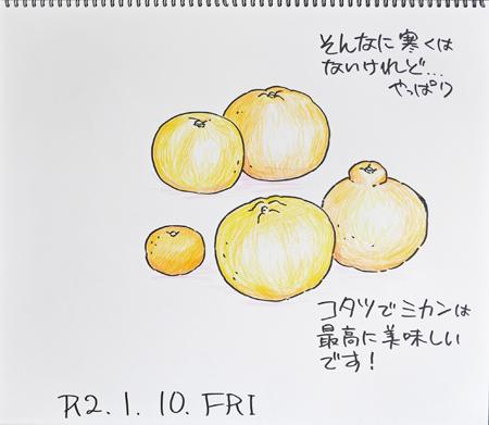 柑橘色々_b0364195_09223447.jpg