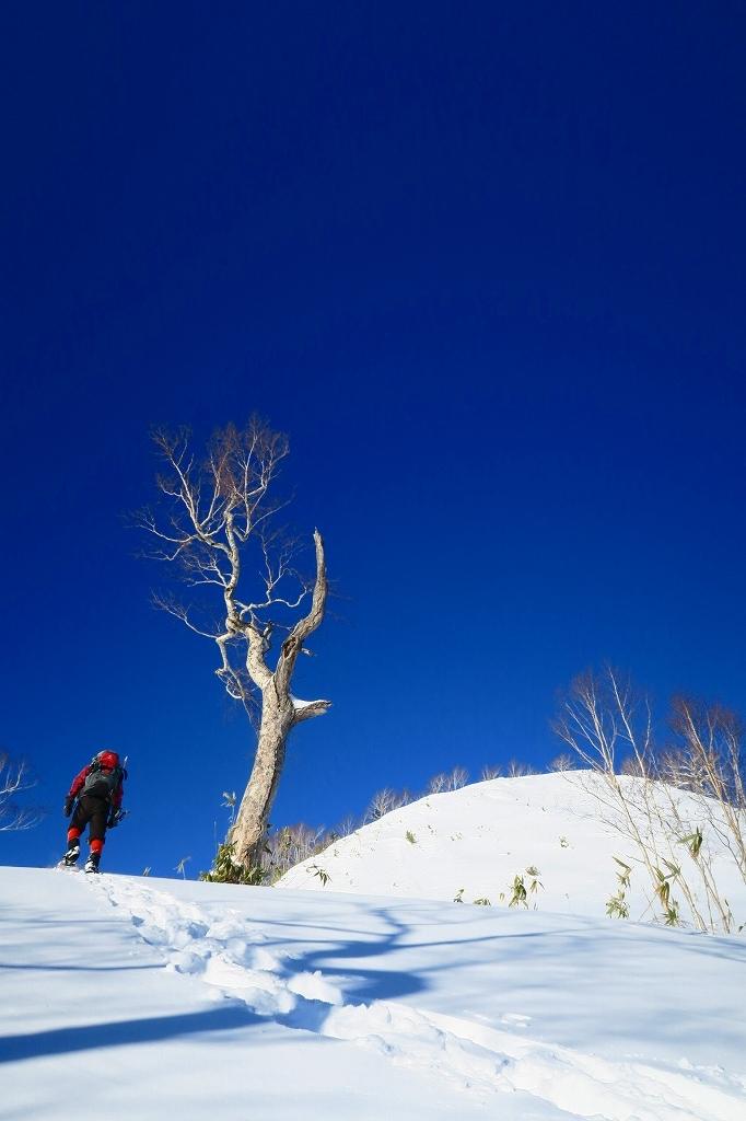 視界がすこぶる良かったオコタンペ山、2020.1.9_f0138096_20532203.jpg