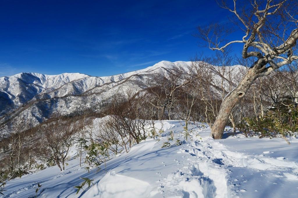視界がすこぶる良かったオコタンペ山、2020.1.9_f0138096_20541033.jpg