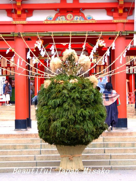二千本の杉の枝で作られた杉盛り・゚☆、・:`☆・・゚・゚☆。生田神社_c0067206_16262210.jpg