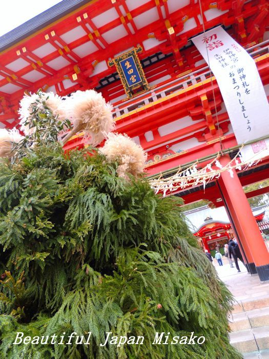 二千本の杉の枝で作られた杉盛り・゚☆、・:`☆・・゚・゚☆。生田神社_c0067206_16262526.jpg