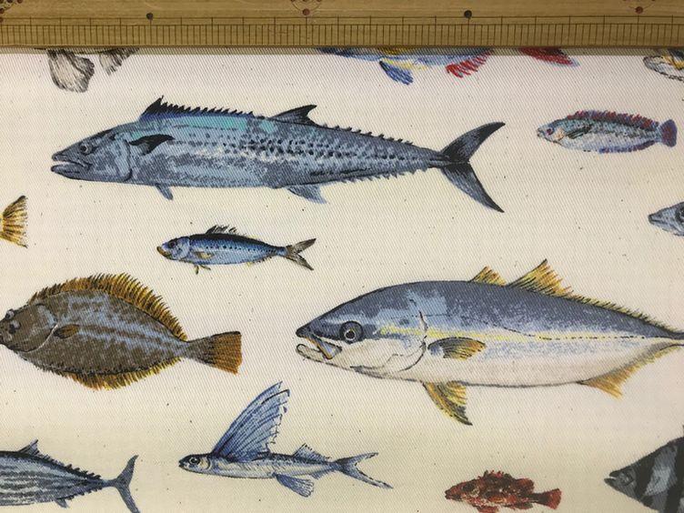 布「魚類」「爬虫類」_d0156706_14391186.jpg