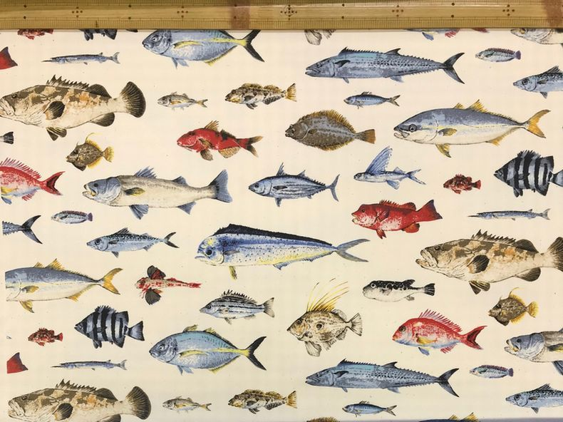 布「魚類」「爬虫類」_d0156706_14391697.jpg