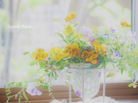 花がくれる、あたたかな時間を・・・_c0098807_18130440.jpg