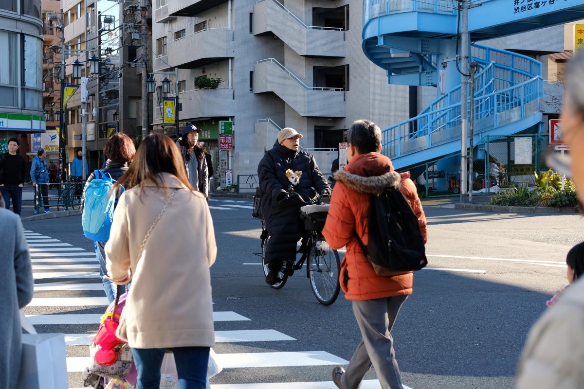 渋谷~吉祥寺  年の瀬カメラおやじ散歩_b0061717_18015052.jpg
