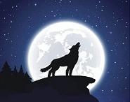 「満月」_b0211926_18245572.jpg