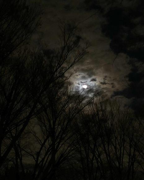 夜道_c0102228_21401411.jpeg