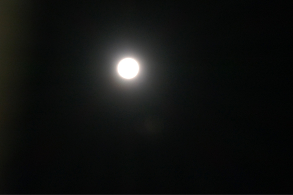 2020年最初の満月_d0116430_23442412.jpg