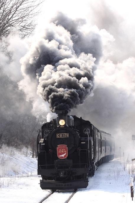 冬の道東観光はじまるよ 1月11日_f0113639_14023253.jpg