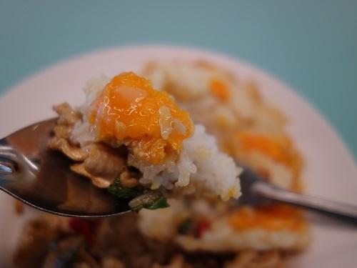 バンコク大学のカフェテリアでガパオ・ガイを食べてみた_c0030645_00201277.jpg