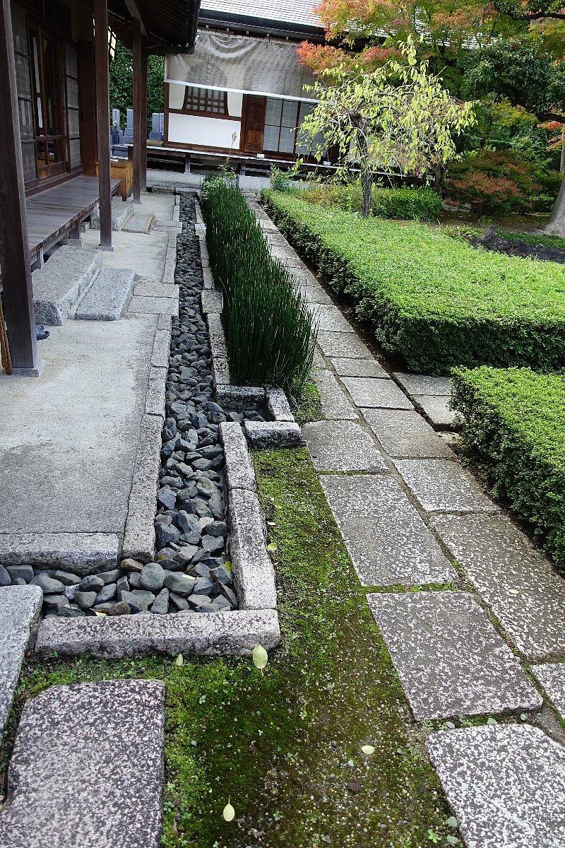 普門寺 方丈西庭「心字の庭」_c0112559_10053101.jpg