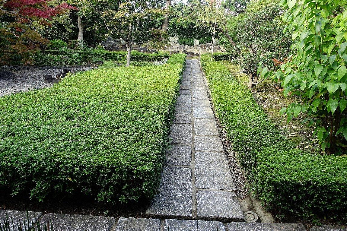 普門寺 方丈西庭「心字の庭」_c0112559_10055961.jpg