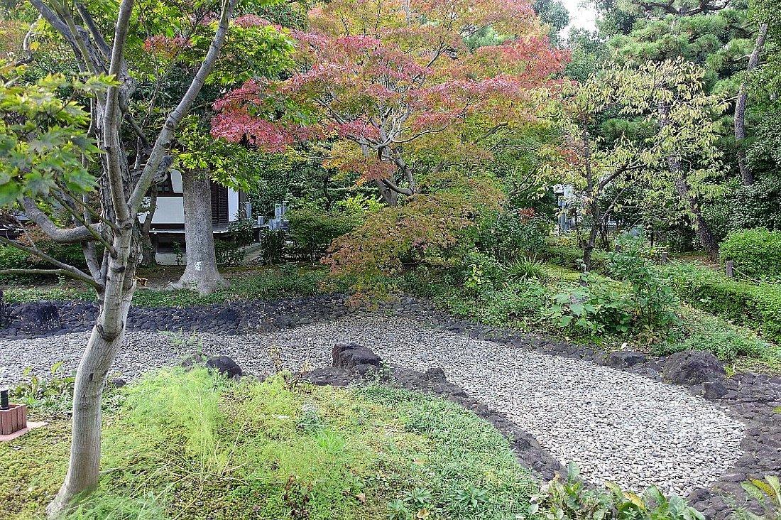 普門寺 方丈西庭「心字の庭」_c0112559_10100956.jpg