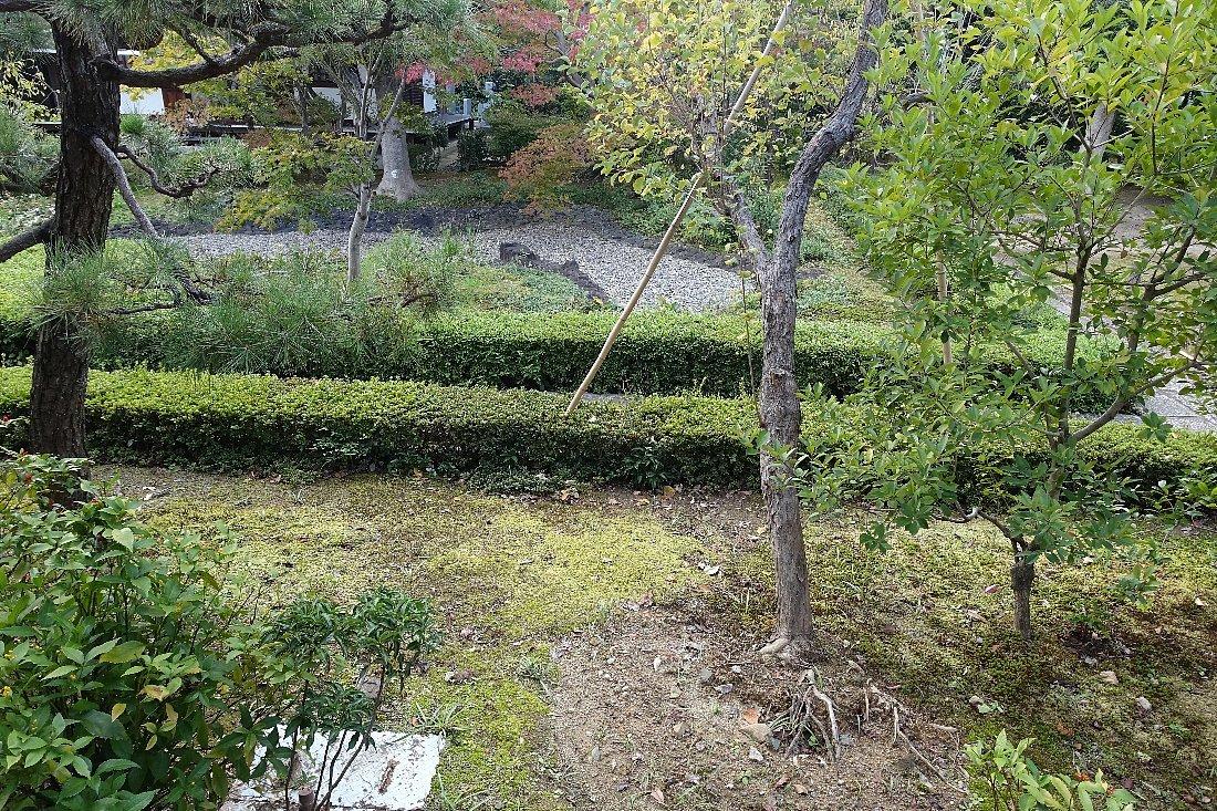 普門寺 方丈西庭「心字の庭」_c0112559_10102510.jpg