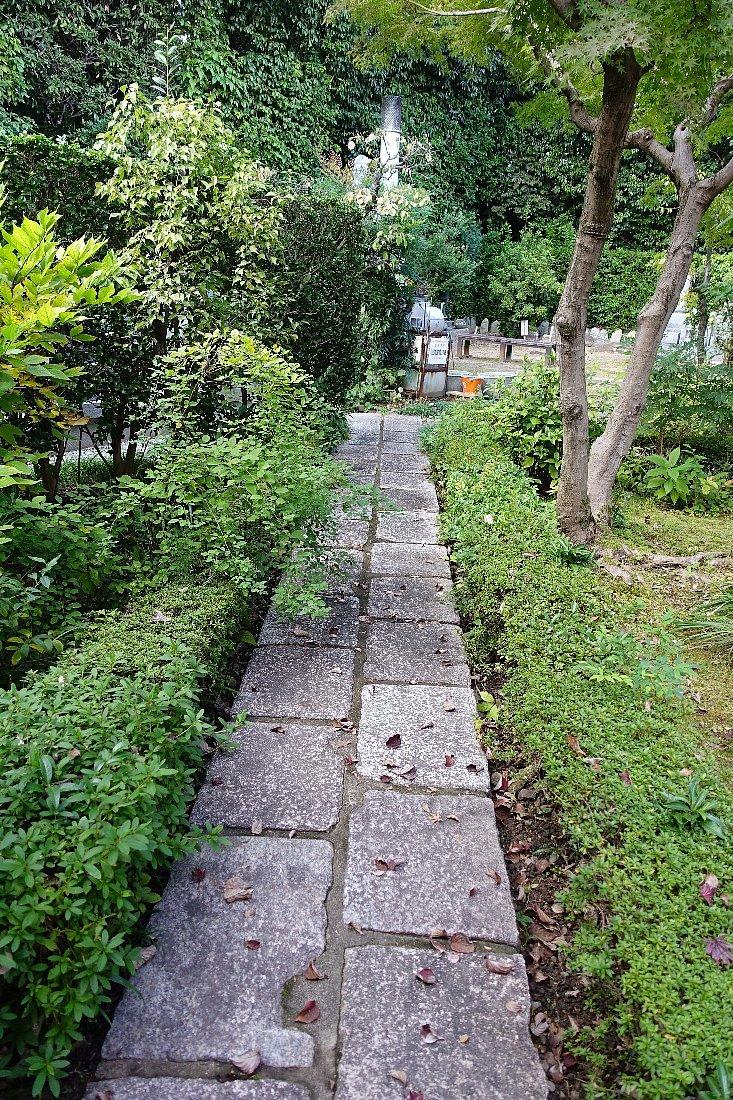 普門寺 方丈西庭「心字の庭」_c0112559_10114972.jpg