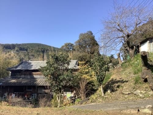 日本晴れとアオモジ_d0336460_02255455.jpeg