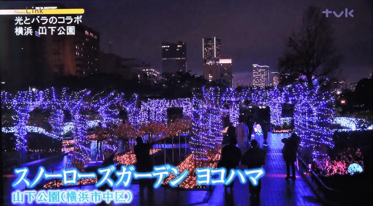 豪華客船お見送りし‥『そうだ 横浜、行こう』④_d0251161_11090290.jpg